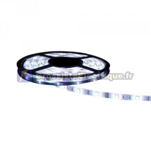 Rouleau de 5 mètres LED bande de 4,8 W / m à froid