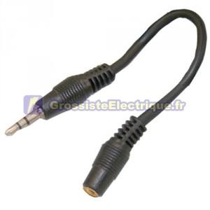 Audio stéréo 3,5 mm adaptateur femelle à mâle 2,5 mm.