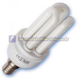 Encadré 10 ampoules basse consommation 20W E14 6400K froide Mini