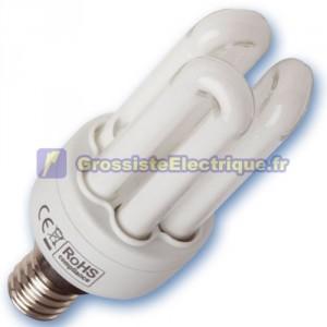 Encadré 10 ampoules basse consommation 20W E14 6400K froid Micro