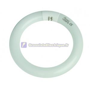 Encadré 20 40W T9 circulaire tube fluorescent triphosphore