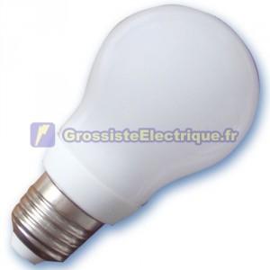 Encadré 10 ampoules basse consommation 13W E27 6400K froide standard