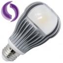 Encadré 10 ampoules LED E27 12W omnidirectionnelles triple 260 850 Lm chaud
