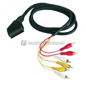 Connexion audio stéréo video.Euroconector à 21 broches mâle à RCA mâle