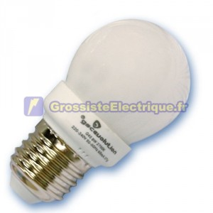 Encadré 10 ampoules basse consommation 9W E14 6400K froid sphériques